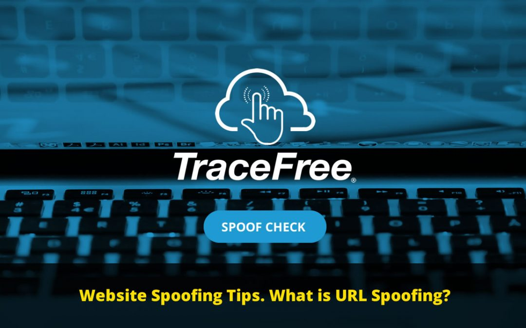 Website Spoofing 101
